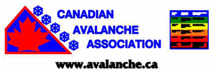 banner_avalanche