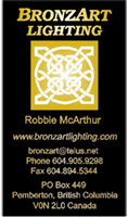 bus_card-BronzeArt